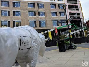 """Hotel: silver buffalo with """"the summit"""" in black writing with construction in the background"""
