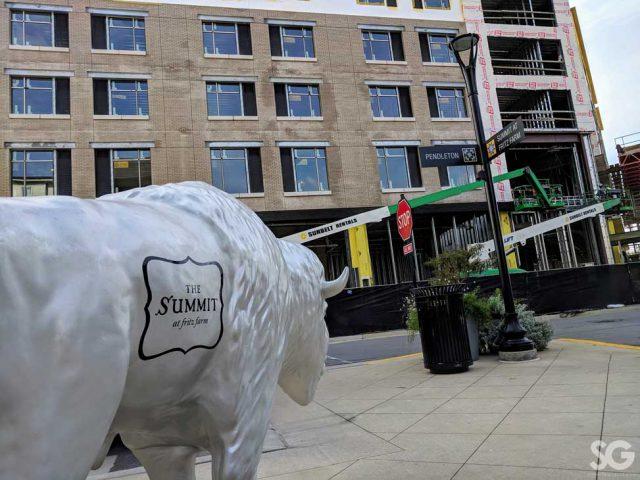 Hotel: silver buffalo with