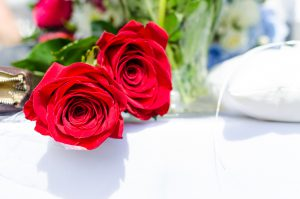 valentine's day: two roses on white linen