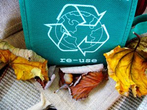 Recycle: teal bag with the recycle symbol and fall leaves around it