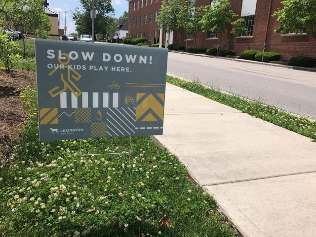 political yard signs turned slow down signs